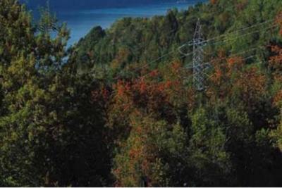 Transelec y su rol en la continuidad del suministro de energía