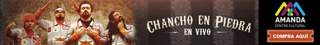 Banner Chanchos