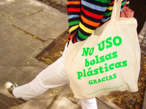 /ecoamerica.cl