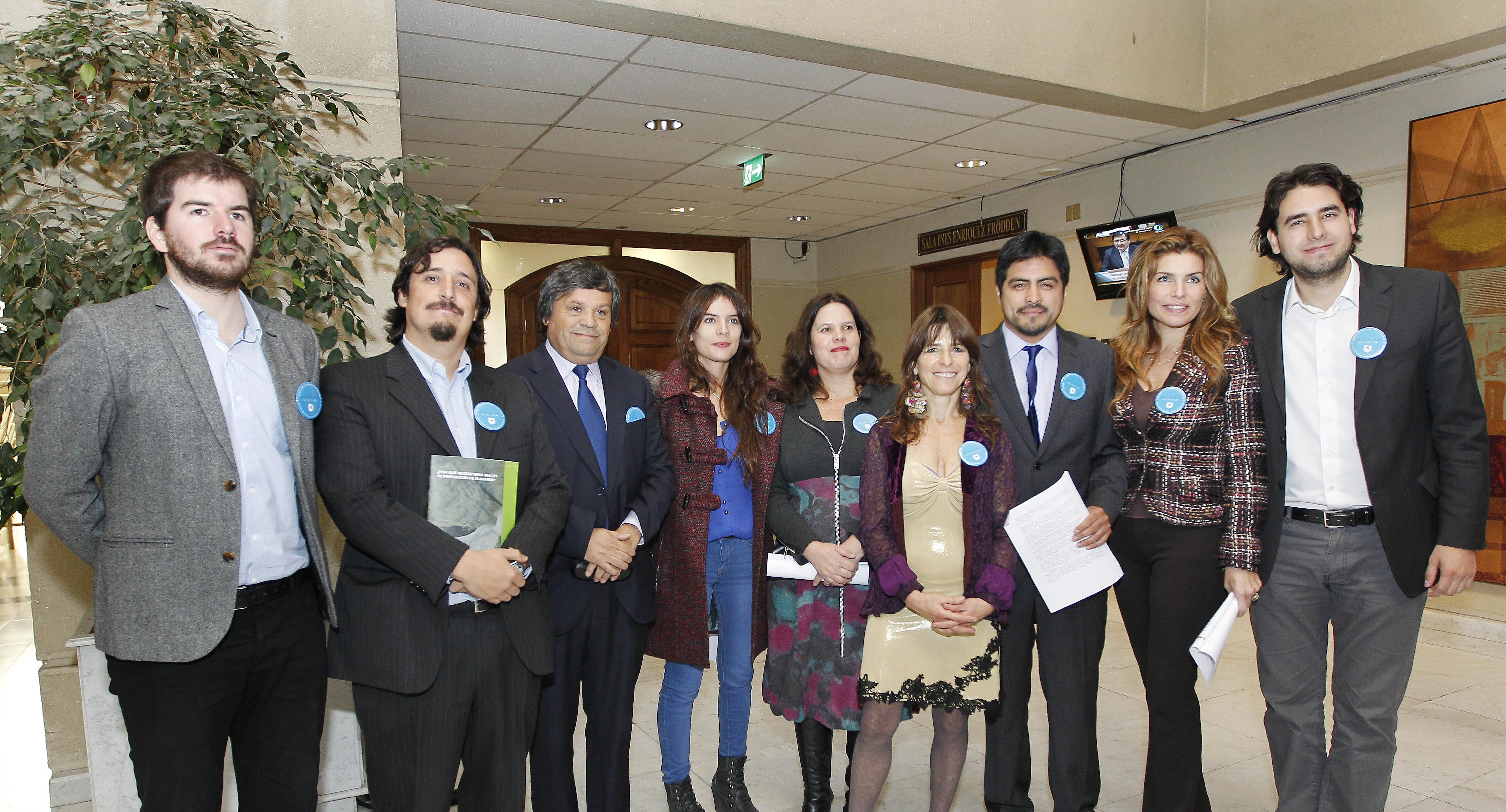 Proyecto Republica Glaciar Camara Diputados 10