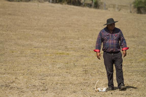 Sequía en la Region de La Araucanía