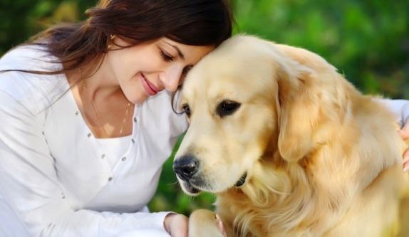 Tu perro te conoce mejor que cualquier otra persona en el mundo ...