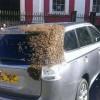 coche-abejas_xoptimizadax--620x349
