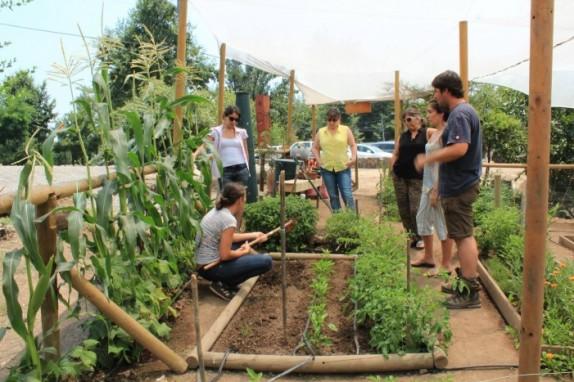 taller-huerto-urbano-agrocultiva-e1409500415566 (2)
