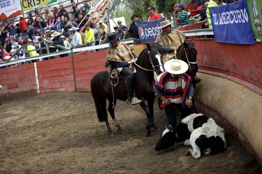 Municipalidad de Santiago determina no entregar recursos públicos al club de rodeo