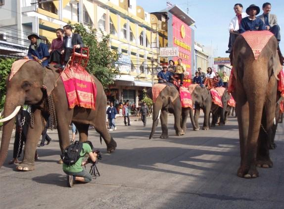 elefantes-en-desfile-turistico
