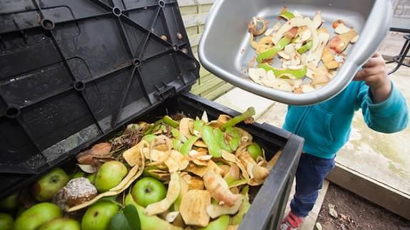 america-latina-y-el-caribe-creara-una-alianza-regional-para-reducir-sus-perdidas-y-desperdicios-de-alimentos-a-la-mitad-al-2030