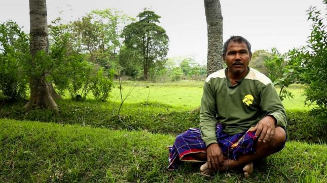 La increíble historia del hombre que plantó un árbol al día durante 35 años para salvar animales