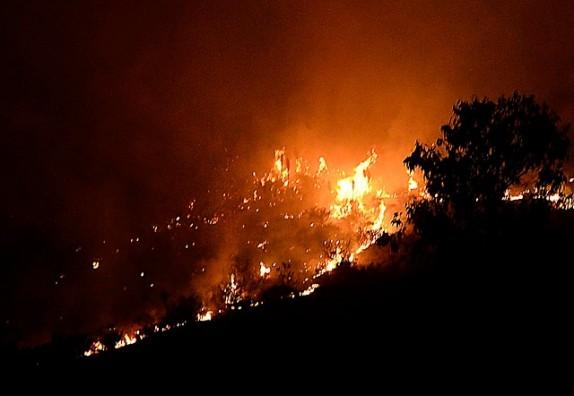 incendio-forestal-2