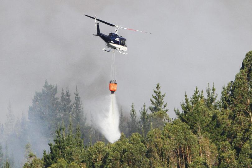 Incendios forestales: ¿cuál es el origen y los impactos de estos desastres?