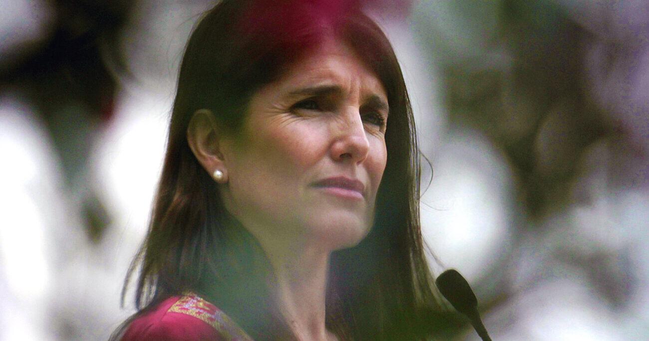 """Gobierno por aborto: """"Es un tema que refleja alta adhesión en la opinión pública"""""""