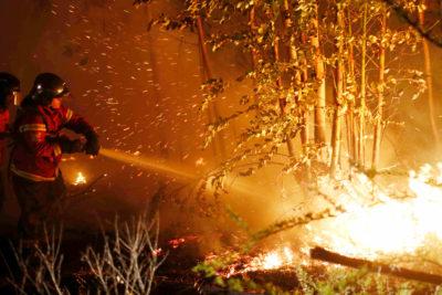 Dura realidad de incendios: Conaf establece en 71 los siniestros en el país