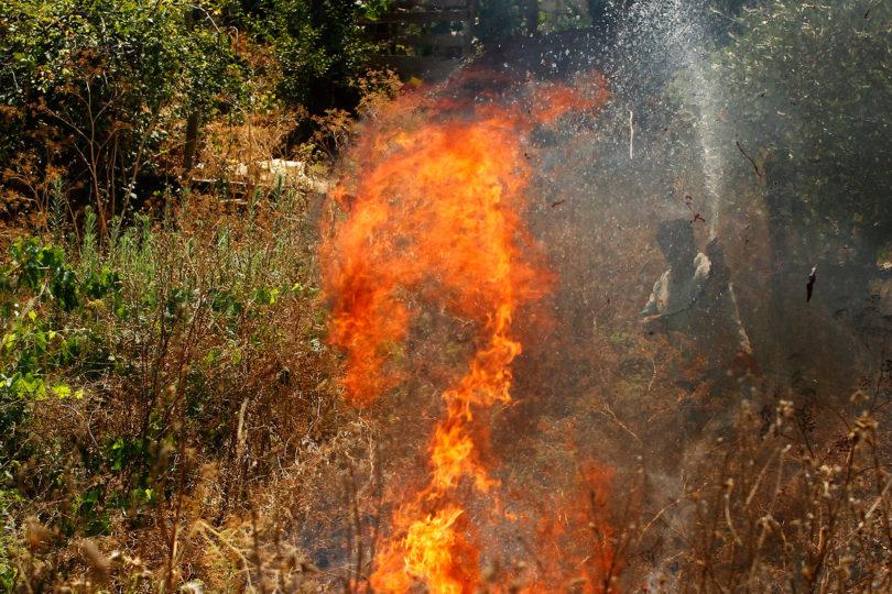 Alcalde de Vichuquén acusa bloqueo intencional de caminos en sectores afectados por los incendios