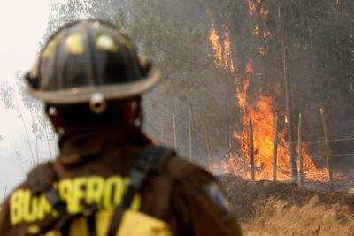 Presentan querellas contra firmas eléctricas por fuegos que afectan a Pumanque