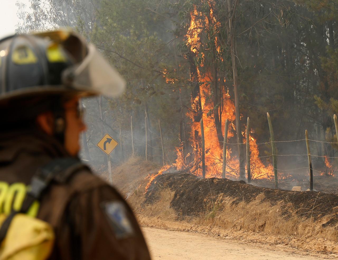 CGE ante formalización de ejecutivo por incendio: No hay fundamento para atribuir ninguna responsabilidad