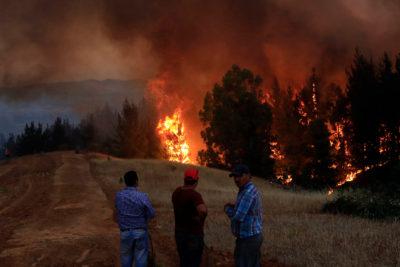 """Bachelet califica incendios como """"el mayor desastre forestal de nuestra historia"""""""