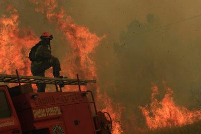 Dirección del Trabajo: Bomberos que combaten incendios forestales no pueden ser despedidos