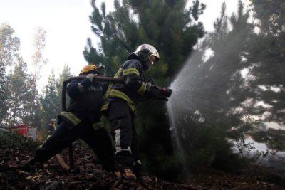 Conmebol anuncia donación de 500.000 dólares a damnificados de incendios forestales en Chile