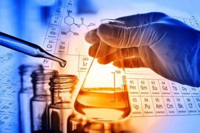 Festival de Ciencia Puerto de Ideas traerá a Chile a Premio Nobel que revolucionó la biología