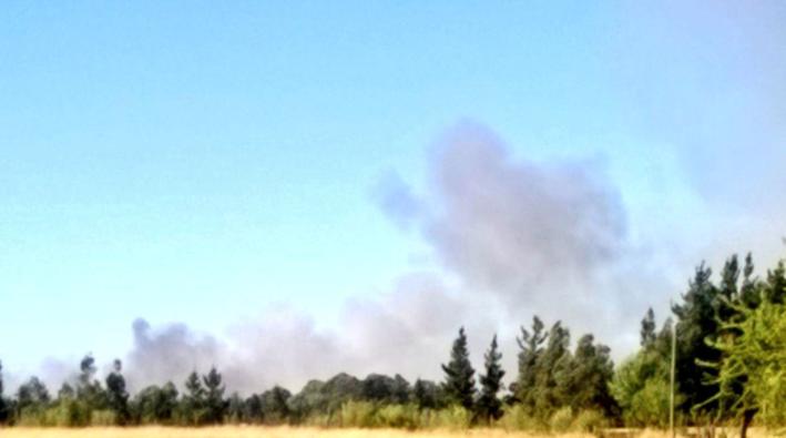 Incendio de bosque en Chillán Viejo gatilla nueva alerta roja