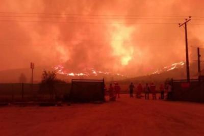 Incendio de Pumanque demorará días en extinguirse: van 5 casas consumidas y 15 mil hectáreas afectadas