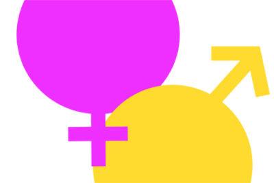 Nueva institucionalidad destinada a mujeres y equidad de género: Desafíos territoriales