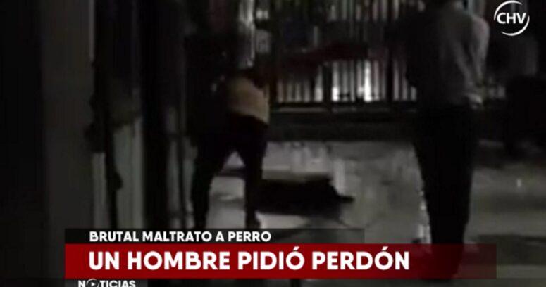"""""""La increíble explicación de uno de los agresores de """"Cholito"""", el perro que mataron a palos en Patronato"""""""