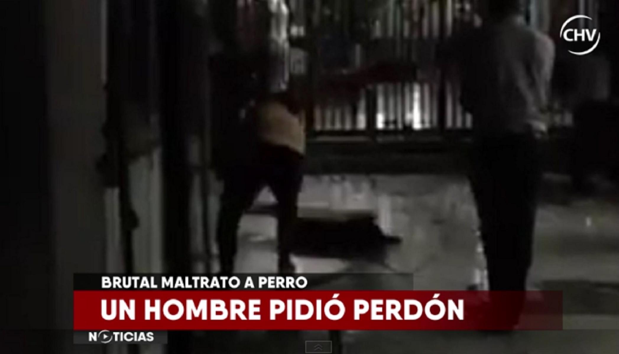 """La increíble explicación de uno de los agresores de """"Cholito"""", el perro que mataron a palos en Patronato"""