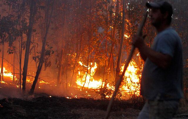 """""""Incendio forestal cobró una nueva víctima fatal en las cercanías de Curepto"""""""