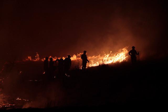 La polémica columna de Wall Street Journal que relaciona al terrorismo con incendios forestales en Chile