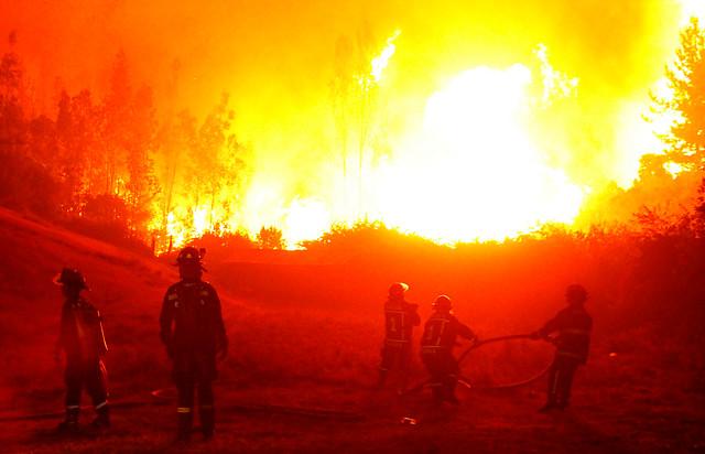 FOTO |Ciudadanos haitianos combaten el fuego codo a codo con brigadistas y bomberos chilenos