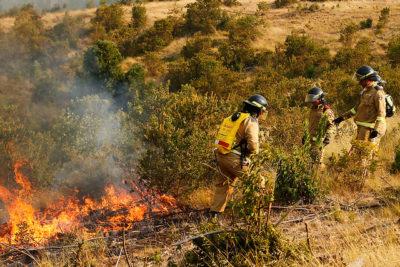 Conaf confirma la muerte de brigadista que sufrió quemaduras durante incendios forestales del verano