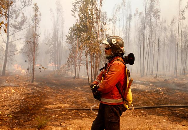 VIDEO |Conmovedora arenga de Paul Vásquez a Bomberos ante críticas por incendios forestales