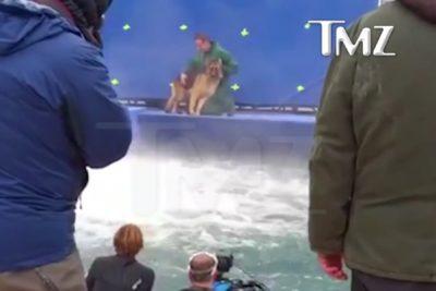 """¿Por qué mostrar el video tras 15 meses?: autor de """"A dog's purpose"""" responde a críticas por maltrato animal"""
