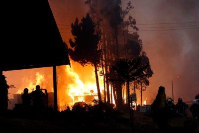 Ministerio Público indaga 520 causas por incendios forestales en enero: 216 están en la región del Maule