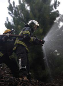 Director de Conaf: incendios podrían extenderse al otoño