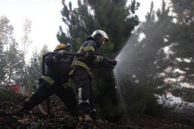 CMPC dispondrá de 20 aeronaves y más de mil colaboradores para combatir incendios forestales