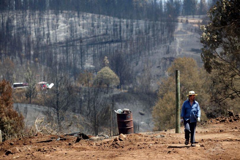 Ministerio de Hacienda: incendios forestales le han costado 333 millones de dólares al Fisco