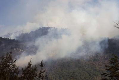 Incendio forestal amenaza la conservación del Parque Nacional Conguillío