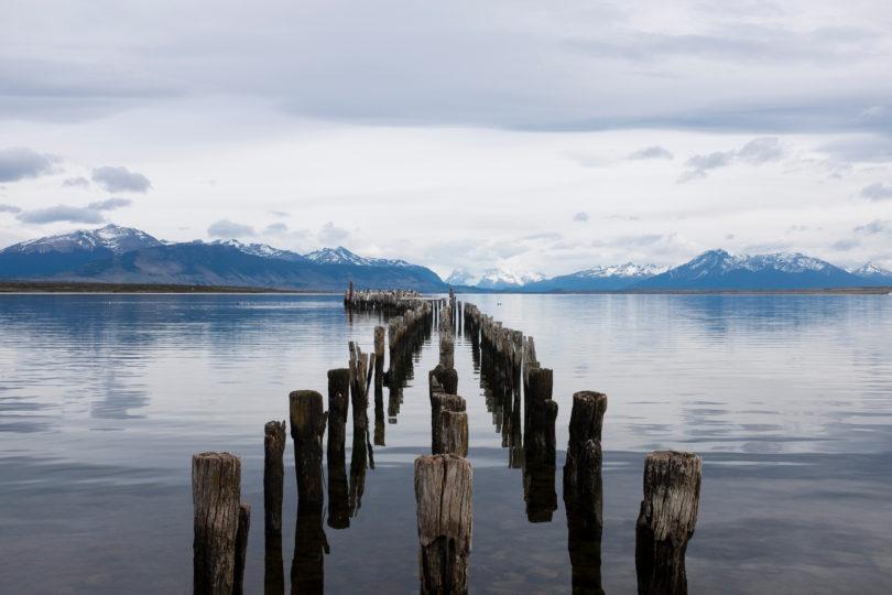 Greenpeace lanza campaña mundial para la  protección de los mares australes de nuestro país