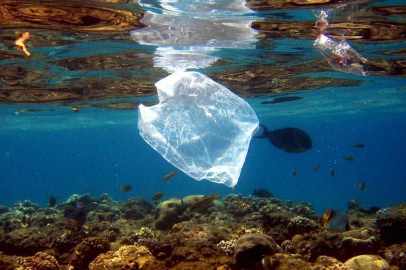 Basura plástica en los océanos: ONU finalmente se hace cargo de este sucio problema global