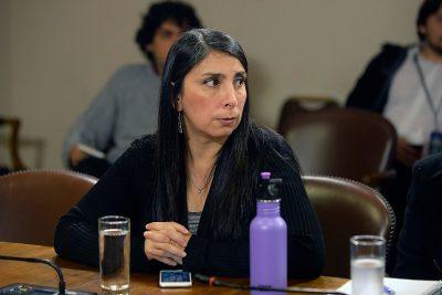El trolleo de Karla Rubilar al diputado Hugo Gutiérrez por la quiebra de la U. Arcis en redes sociales