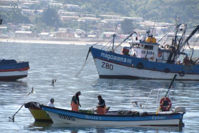 Pescadores de San Vicente en Talcahuano reciben inmobiliaria nueva para realizar mejor su trabajo