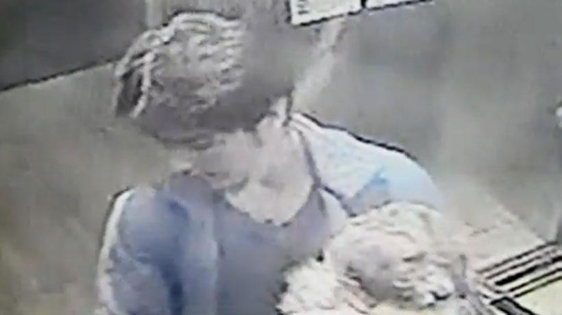 Municipalidad de Santiago presentará querella contra sujeto que acuchilló y lanzó a perrito desde edificio