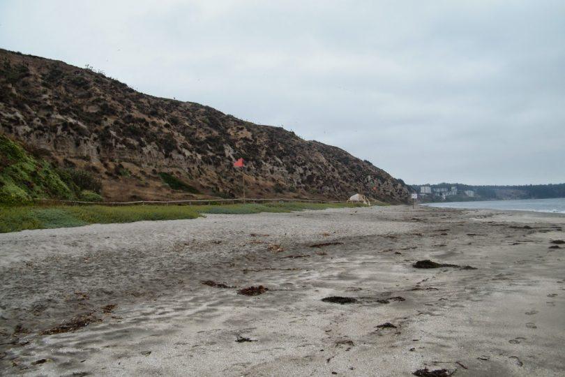 Movilh denunció abusos, discriminación y cobros irregulares en playa nudista de Horcón