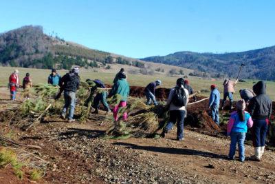 Barricadas impiden ingreso de censistas a comunidad mapuche de Temucuicui