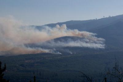 Roban más de $77 millones destinados a reconstruir comuna afectada por incendios del verano