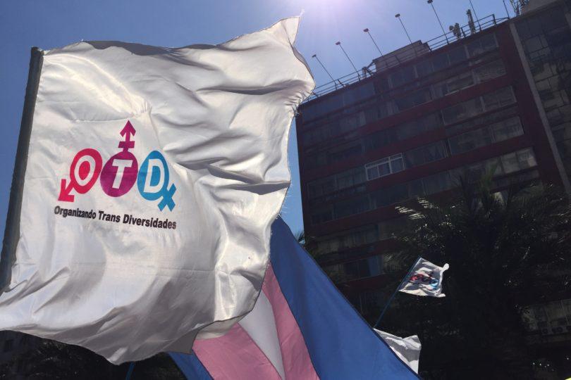 Censo 2017: organización acusa exclusión a personas trans y género no-binario