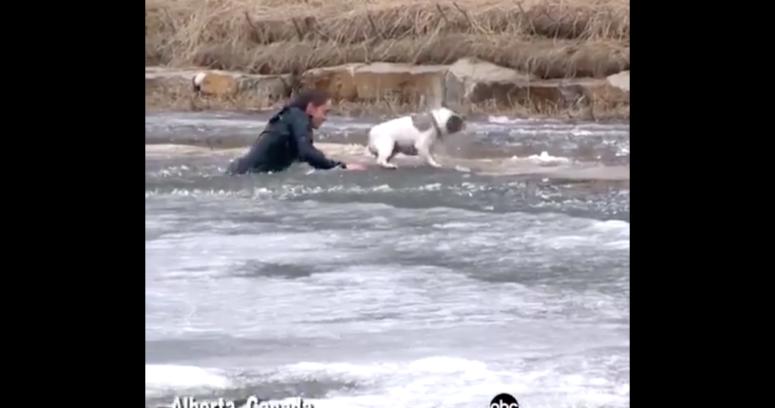 """""""VIDEO  Amor de verdad: la arriesgada maniobra de un hombre para salvar a su perro de un estanque congelado"""""""