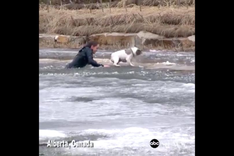 VIDEO |Amor de verdad: la arriesgada maniobra de un hombre para salvar a su perro de un estanque congelado
